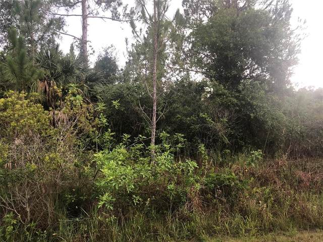 Richbriar Drive, North Port, FL 34288 (MLS #A4508237) :: CARE - Calhoun & Associates Real Estate
