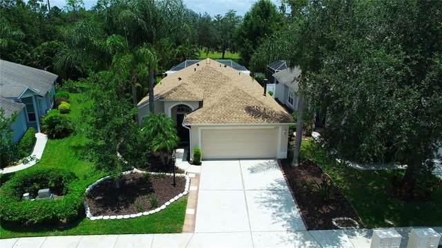 11274 Beebalm Circle, Lakewood Ranch, FL 34202 (MLS #A4508282) :: Gate Arty & the Group - Keller Williams Realty Smart