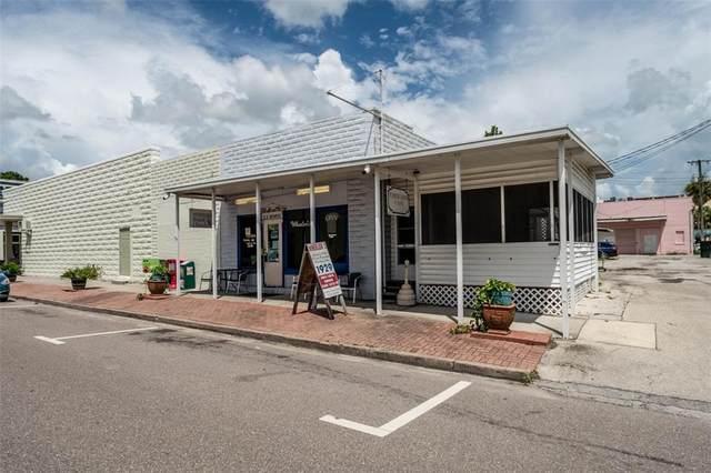 13 S Monroe Avenue, Arcadia, FL 34266 (MLS #A4508345) :: Century 21 Professional Group