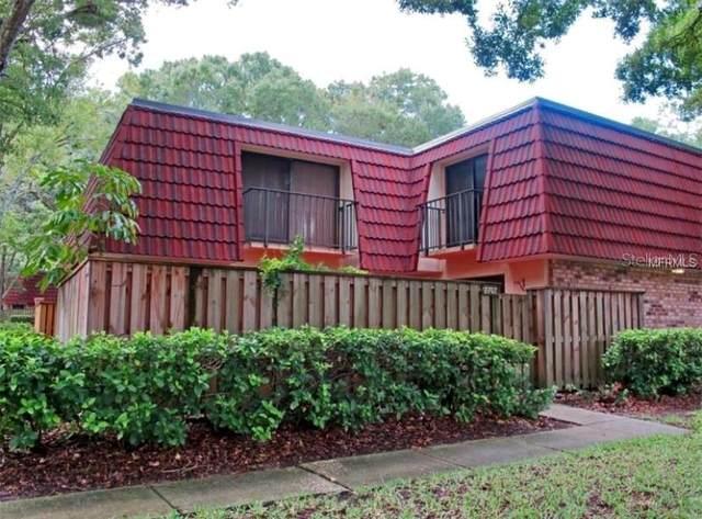 2702 9TH Court, Palm Harbor, FL 34684 (MLS #A4508379) :: Frankenstein Home Team