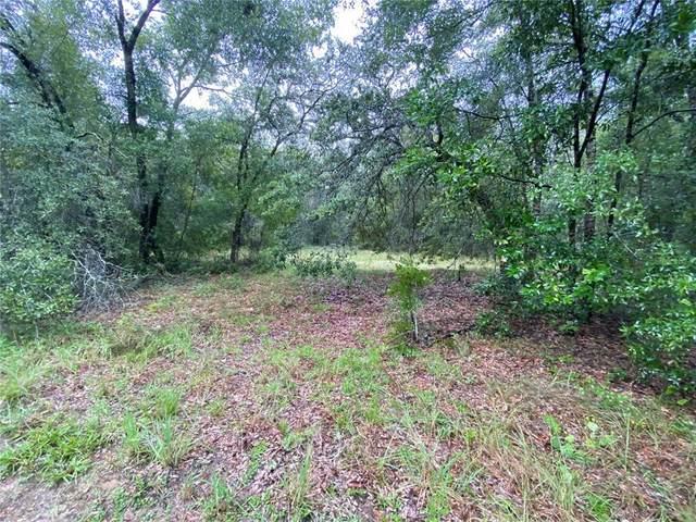 3354 N Carolwood Point, Hernando, FL 34442 (MLS #A4508420) :: Dalton Wade Real Estate Group