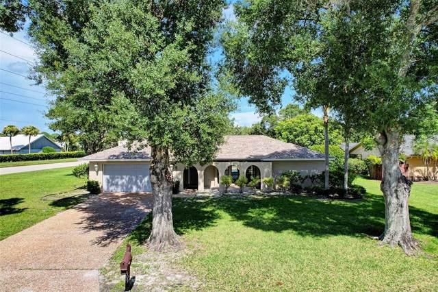 4409 Eleuthera Court, Sarasota, FL 34233 (MLS #A4508540) :: Burwell Real Estate