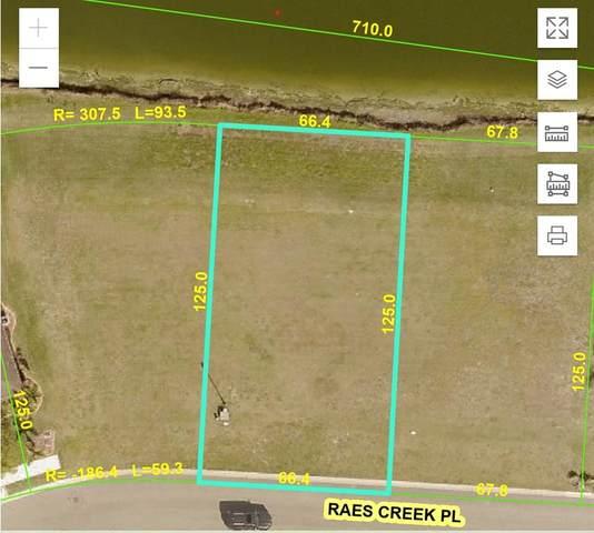 9237 Raes Creek Place, Palmetto, FL 34221 (MLS #A4508653) :: SunCoast Home Experts