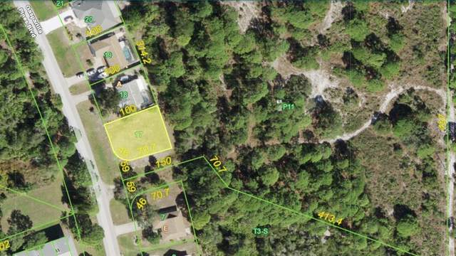 6657 Gasparilla Pines Boulevard, Englewood, FL 34224 (MLS #A4508673) :: Young Real Estate