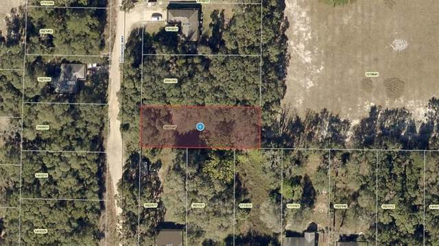Dogwood Way, Lady Lake, FL 32159 (MLS #A4508825) :: Gate Arty & the Group - Keller Williams Realty Smart