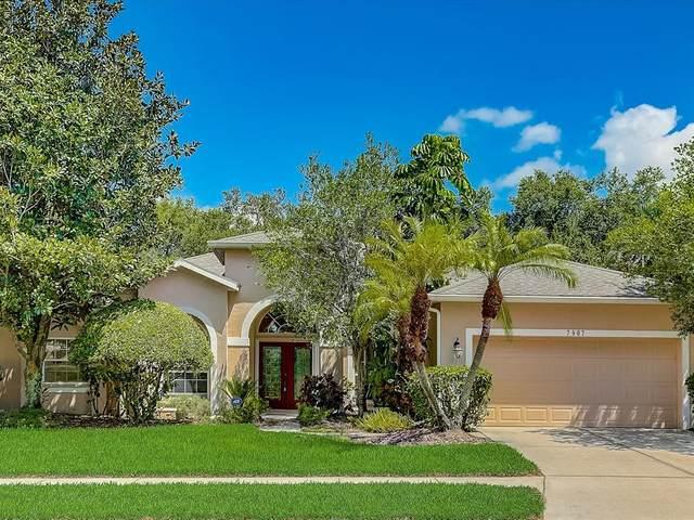 7907 Kavanagh Court, Sarasota, FL 34240 (MLS #A4508835) :: Everlane Realty