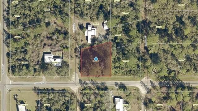 Corrine Avenue, Paisley, FL 32767 (MLS #A4509025) :: Globalwide Realty