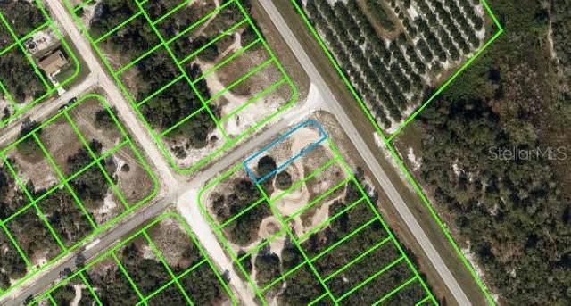 937 County Road 29, Lake Placid, FL 33852 (MLS #A4509357) :: RE/MAX Elite Realty