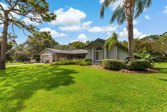 6332 Chiswick Court, New Port Richey, FL 34655 (MLS #A4509648) :: Zarghami Group