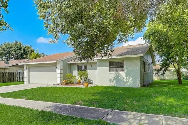 2462 Briar Oak Circle, Sarasota, FL 34232 (MLS #A4509688) :: Zarghami Group