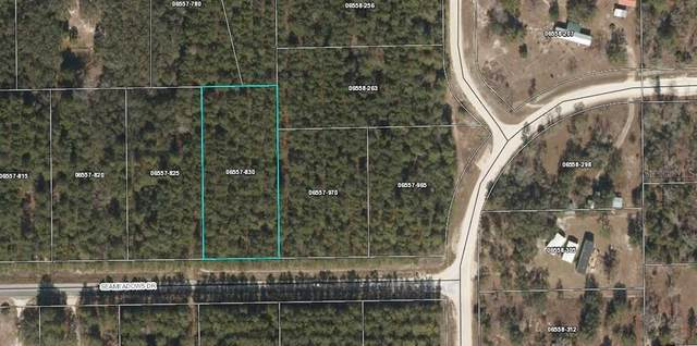 0 Seameadows Drive, Perry, FL 32348 (MLS #A4509741) :: Premium Properties Real Estate Services