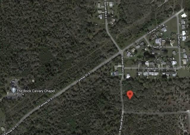 810 Sunset Boulevard E, Punta Gorda, FL 33982 (MLS #A4509988) :: Everlane Realty