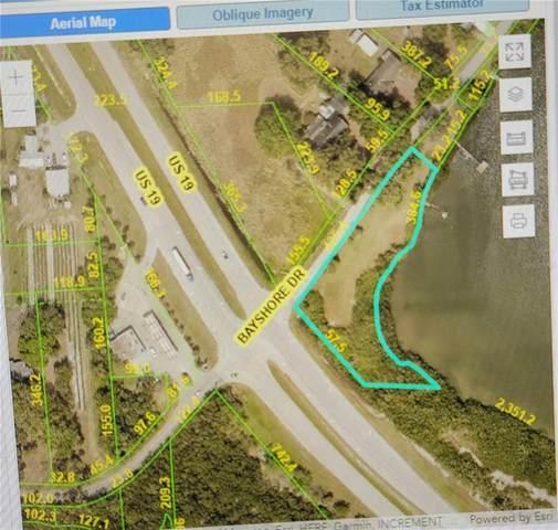 325 Bayshore Drive, Palmetto, FL 34221 (MLS #A4510007) :: SunCoast Home Experts