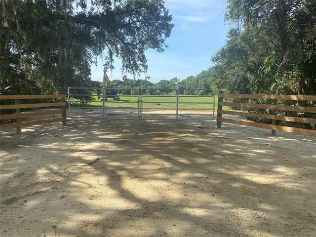 SE Shelfer Avenue, Arcadia, FL 34266 (MLS #A4510257) :: Keller Williams Suncoast