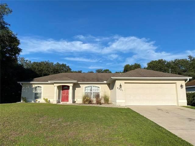 4001 Honeybee Street, North Port, FL 34291 (MLS #A4510321) :: Delgado Home Team at Keller Williams