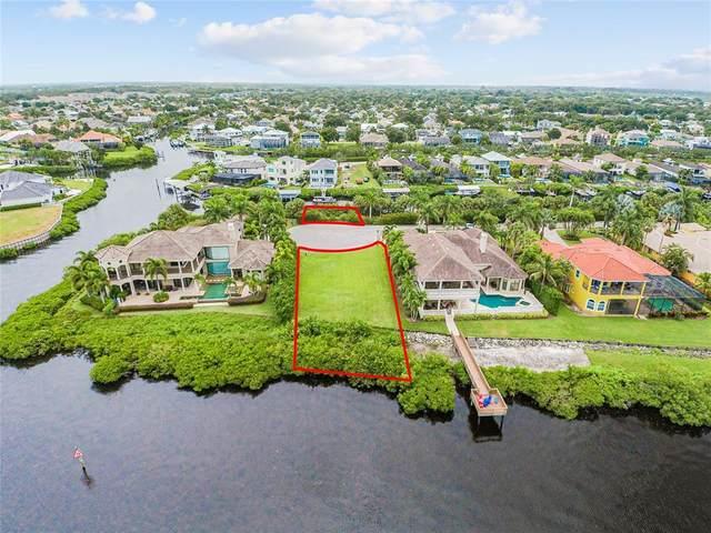 4223 Hawk Island Drive, Bradenton, FL 34208 (MLS #A4510434) :: Blue Chip International Realty