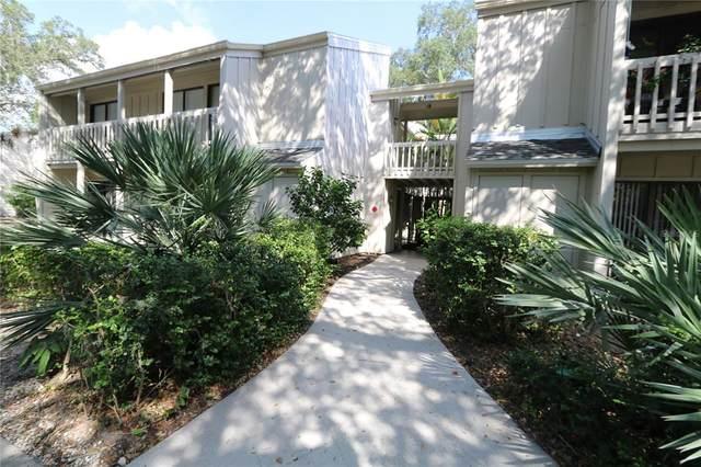 2228 Bahia Vista Street C6, Sarasota, FL 34239 (MLS #A4510802) :: The Kardosh Team