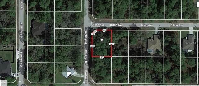 18117 Dillon Avenue, Port Charlotte, FL 33954 (MLS #A4511074) :: Vacasa Real Estate