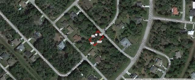 Sena Road, North Port, FL 34291 (MLS #A4511212) :: MVP Realty