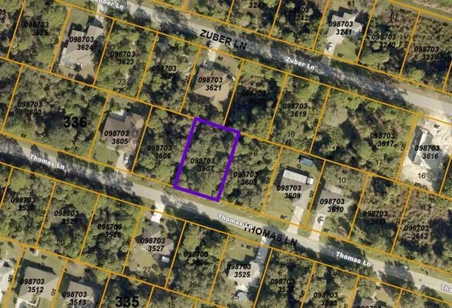 Thomas Lane, North Port, FL 34286 (MLS #A4511300) :: Delgado Home Team at Keller Williams