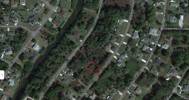 Rice Terrace, North Port, FL 34286 (MLS #A4511423) :: Your Florida House Team