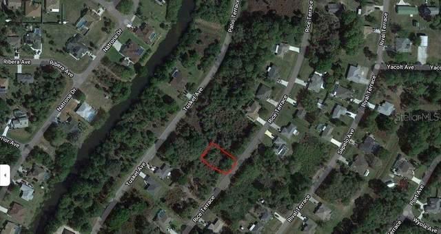 Rice Terrace, North Port, FL 34286 (MLS #A4511423) :: Team Turner
