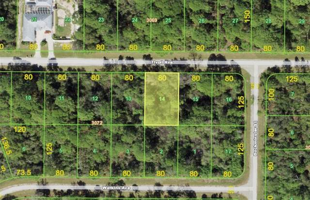 15189 Tivoli Avenue, Port Charlotte, FL 33953 (MLS #A4511571) :: Globalwide Realty