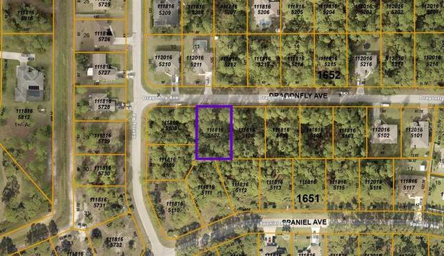 Dragonfly Avenue, North Port, FL 34288 (MLS #A4511700) :: Globalwide Realty