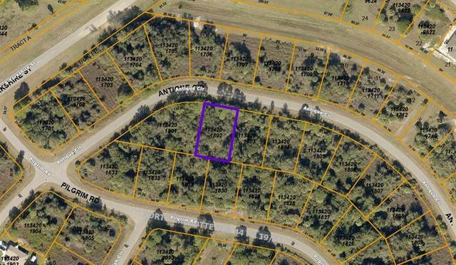 Antique Circle, North Port, FL 34288 (MLS #A4511702) :: Globalwide Realty