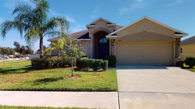 16668 Myrtle Sand Drive, Wimauma, FL 33598 (MLS #A4511742) :: Sarasota Property Group at NextHome Excellence