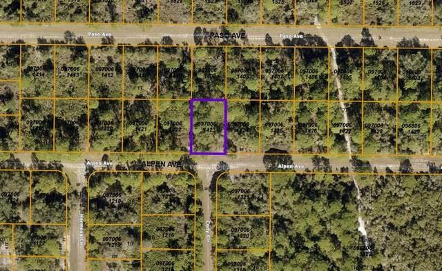 Alpen Avenue, North Port, FL 34291 (MLS #A4511826) :: GO Realty