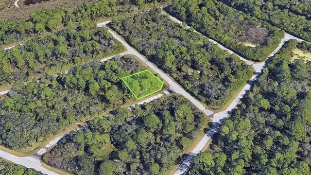 15204 Plant Avenue, Port Charlotte, FL 33953 (MLS #A4512039) :: Globalwide Realty