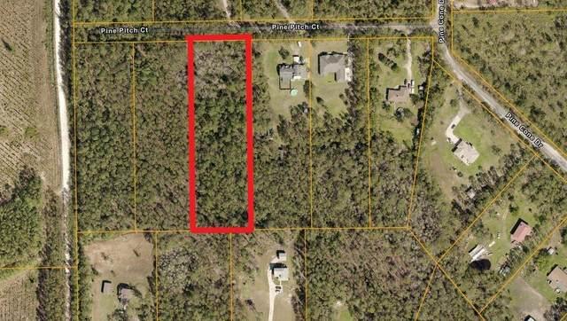 3781 Pine Pitch Court, Ormond Beach, FL 32174 (MLS #A4512099) :: Pepine Realty