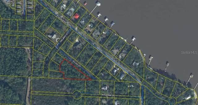 Elise Street, Santa Rosa Beach, FL 32459 (MLS #A4512104) :: Zarghami Group