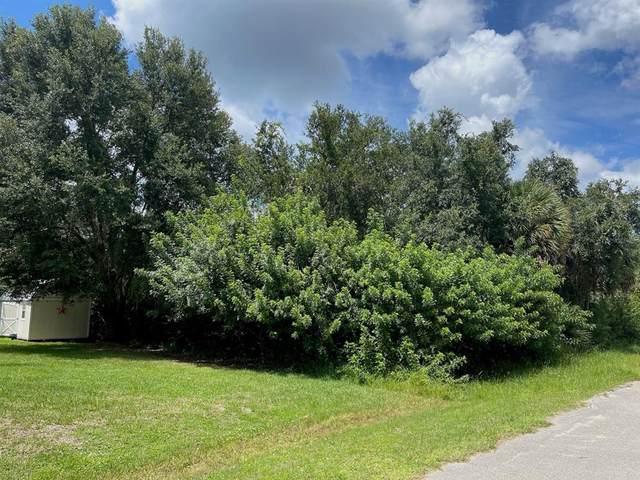 3479 La Rue Street, Port Charlotte, FL 33948 (MLS #A4512112) :: Gate Arty & the Group - Keller Williams Realty Smart