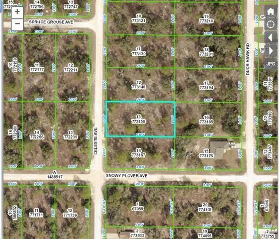 15088 Celeste Avenue, Weeki Wachee, FL 34614 (MLS #A4512183) :: Vacasa Real Estate