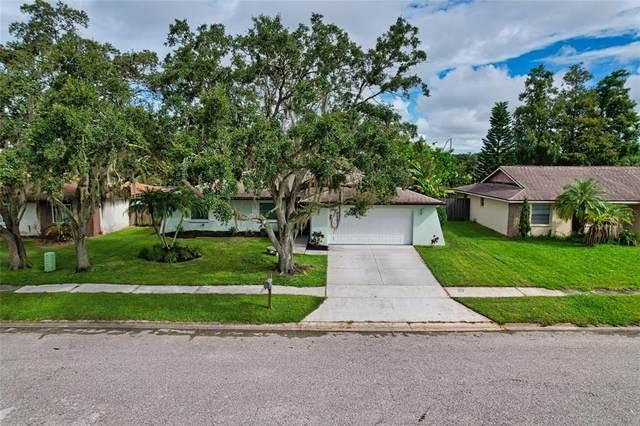 6635 Brentford Road, Sarasota, FL 34241 (MLS #A4512198) :: The Hesse Team