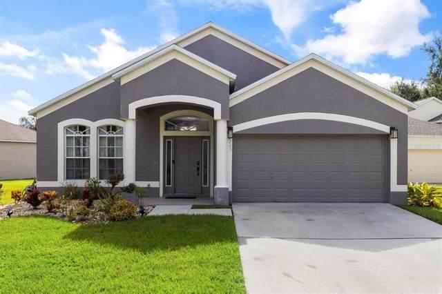 6705 Monarch Park Drive, Apollo Beach, FL 33572 (MLS #A4512383) :: Zarghami Group
