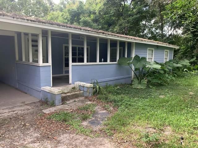 704 Busbee Avenue, Apopka, FL 32703 (MLS #A4512483) :: Zarghami Group