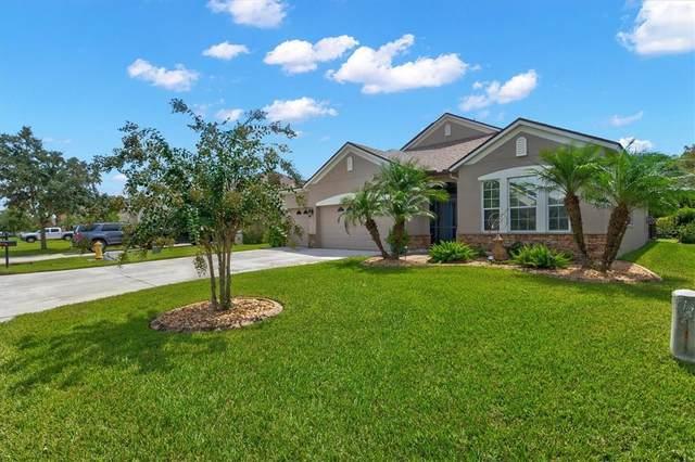 12247 23RD Street E, Parrish, FL 34219 (MLS #A4512568) :: Cartwright Realty