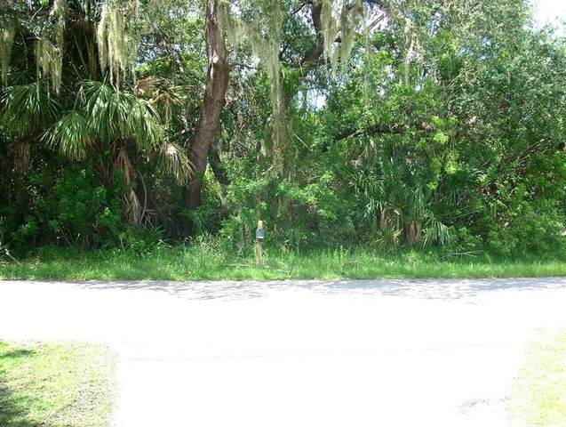 1419 Rommel Street, Port Charlotte, FL 33952 (MLS #A4512617) :: Premium Properties Real Estate Services