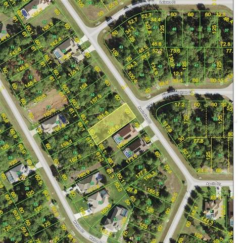 225 Australian Drive, Rotonda West, FL 33947 (MLS #A4512713) :: Gate Arty & the Group - Keller Williams Realty Smart