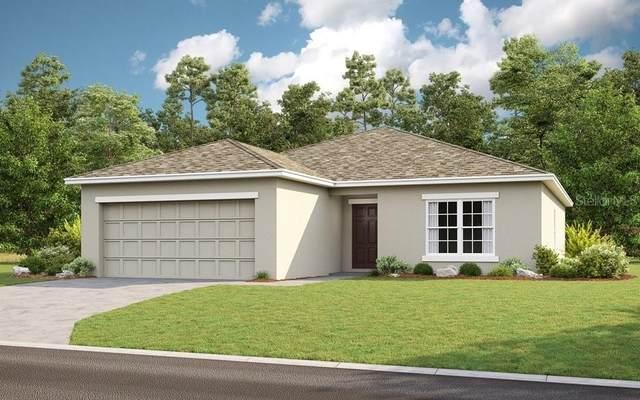 215 White Heron Way, Saint Cloud, FL 34769 (MLS #A4512828) :: Zarghami Group