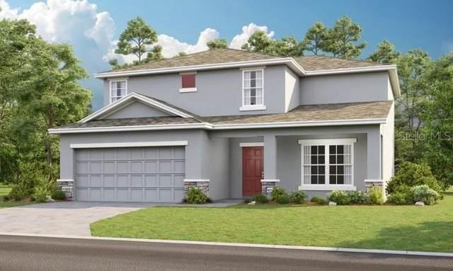 4271 Southern Vista Loop, Saint Cloud, FL 34769 (MLS #A4512838) :: Zarghami Group