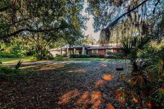 7700 Iguana Drive, Sarasota, FL 34241 (MLS #A4512842) :: Cartwright Realty