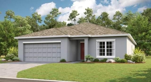 4282 Southern Vista Loop, Saint Cloud, FL 34769 (MLS #A4512955) :: CENTURY 21 OneBlue