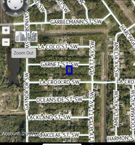 434 Garnet Street SW, Palm Bay, FL 32908 (MLS #A4512961) :: Delgado Home Team at Keller Williams