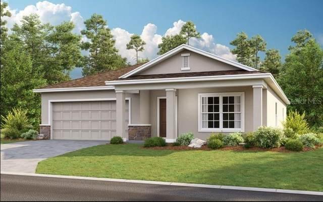 4290 Southern Vista Loop, Saint Cloud, FL 34769 (MLS #A4512975) :: RE/MAX Elite Realty