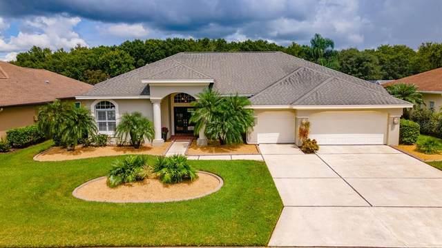 11912 Oak Ridge Drive, Parrish, FL 34219 (MLS #A4512980) :: SunCoast Home Experts