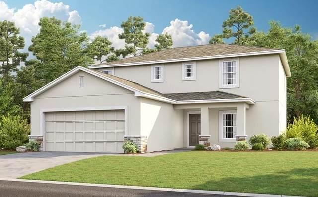 341 White Heron Way, Saint Cloud, FL 34769 (MLS #A4513007) :: Zarghami Group